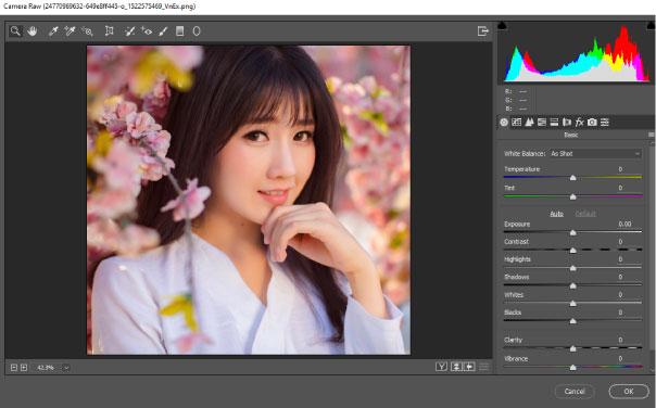 anh-bitmap-tren-photoshop
